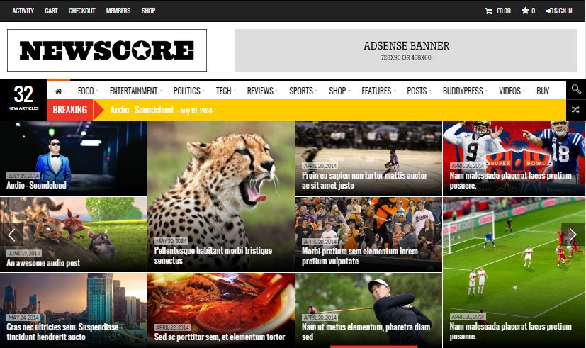 WordPress Premium Themes NewsCore