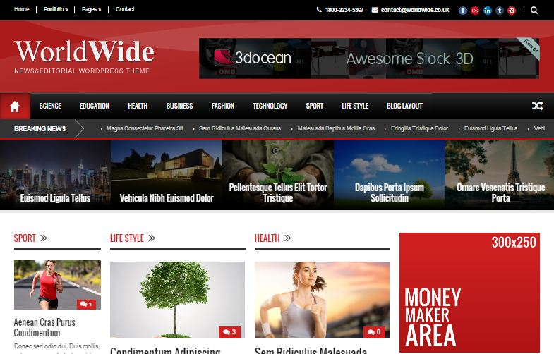 WordPress Premium Themes WorldWide