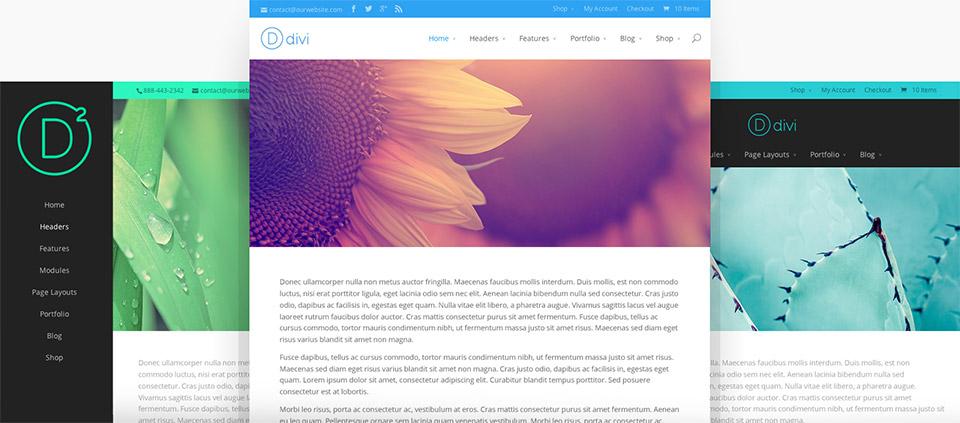 Divi WordPress Theme Header