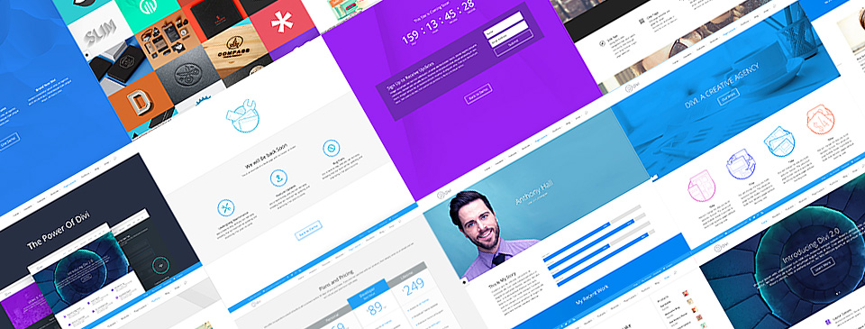 Divi WordPress Theme Pre-Made Designs