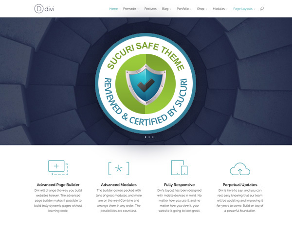 Divi WordPress Theme Security